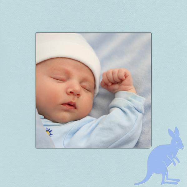 Kangaroo (Light Blue) - Paperless Post - null