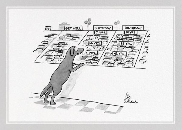 Dog Birthday - The New Yorker - Birthday