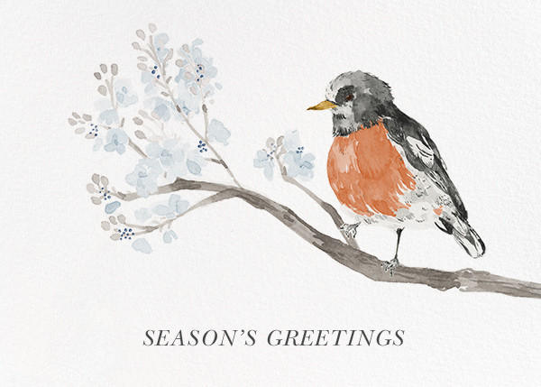 English Robin (Greeting) - Paperless Post - Holiday cards