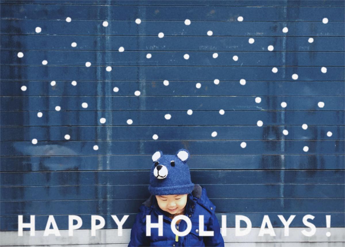 Winter Flakes (Horizontal) - The Indigo Bunting - Holiday cards