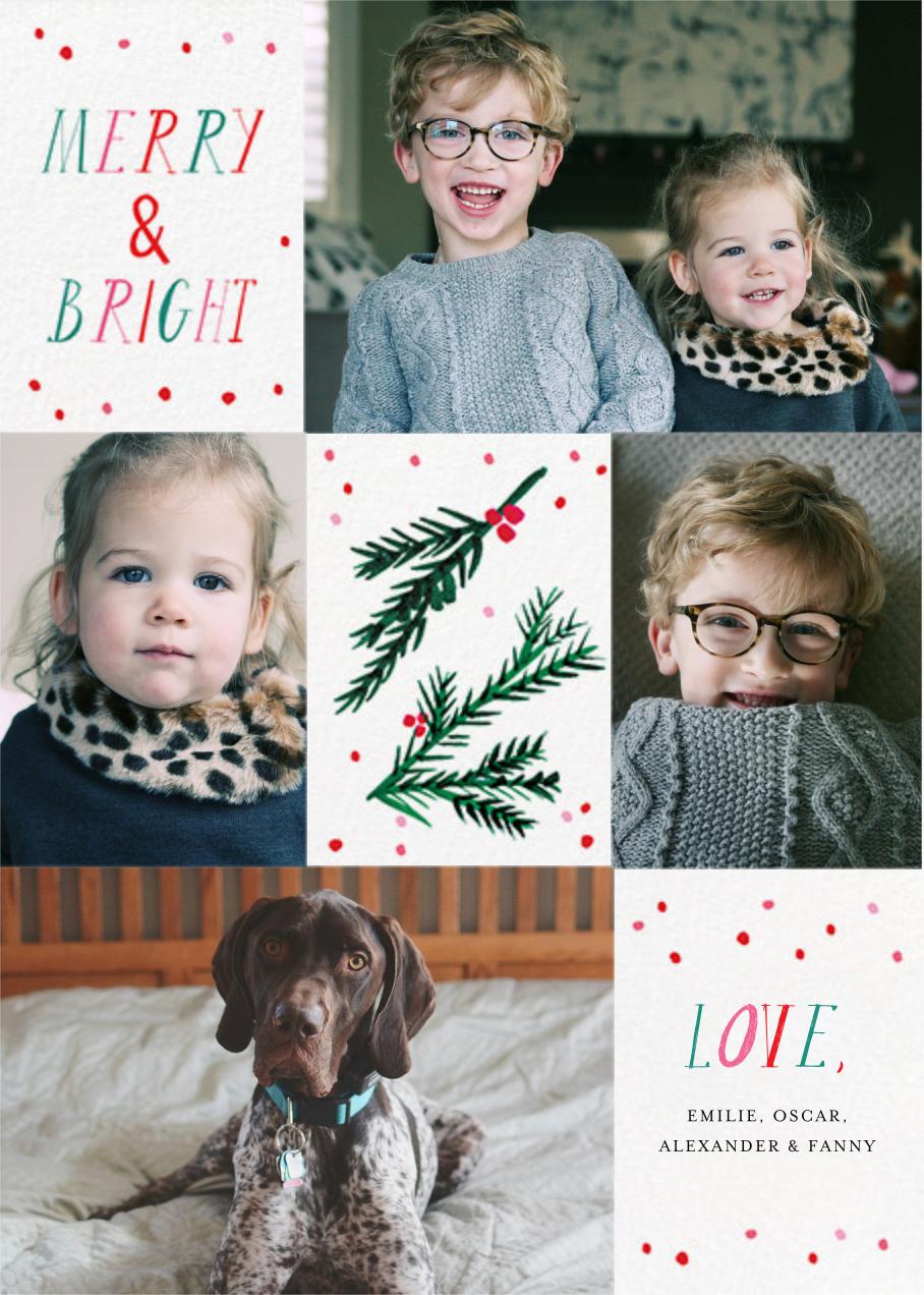 Tis the Season to Be Holly (Multi-Photo) - Mr. Boddington's Studio - Holiday cards