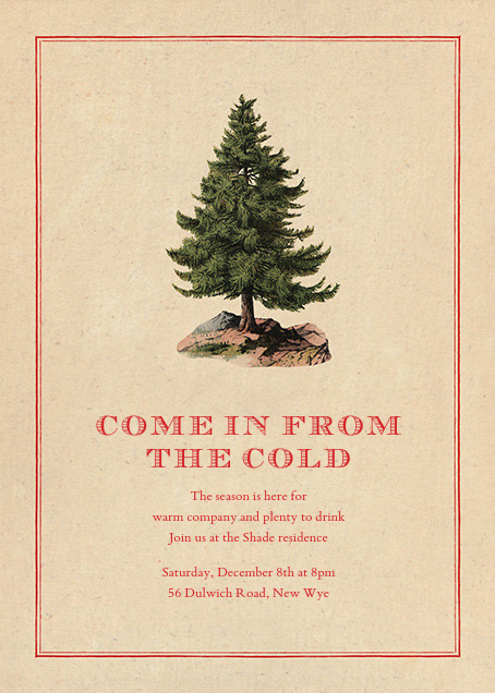 Lone Fir - John Derian - Winter entertaining