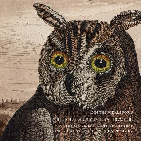 Owl - John Derian - Halloween