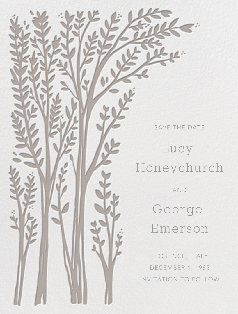 Louisa I (Save The Date) - Taupe - Paperless Post - Party save the dates