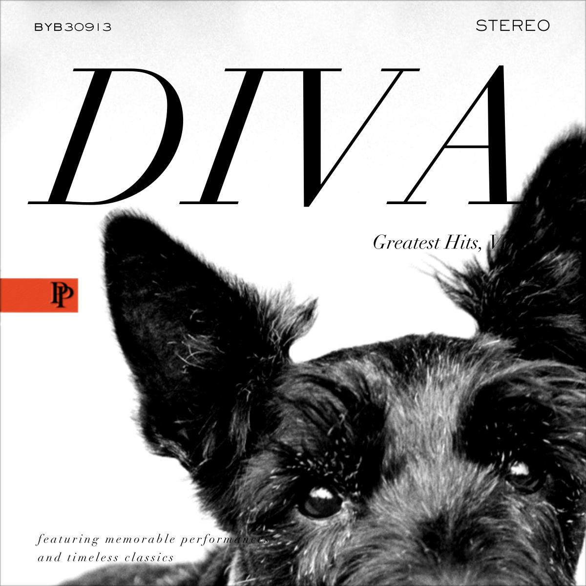 Diva Album - Black - Paperless Post