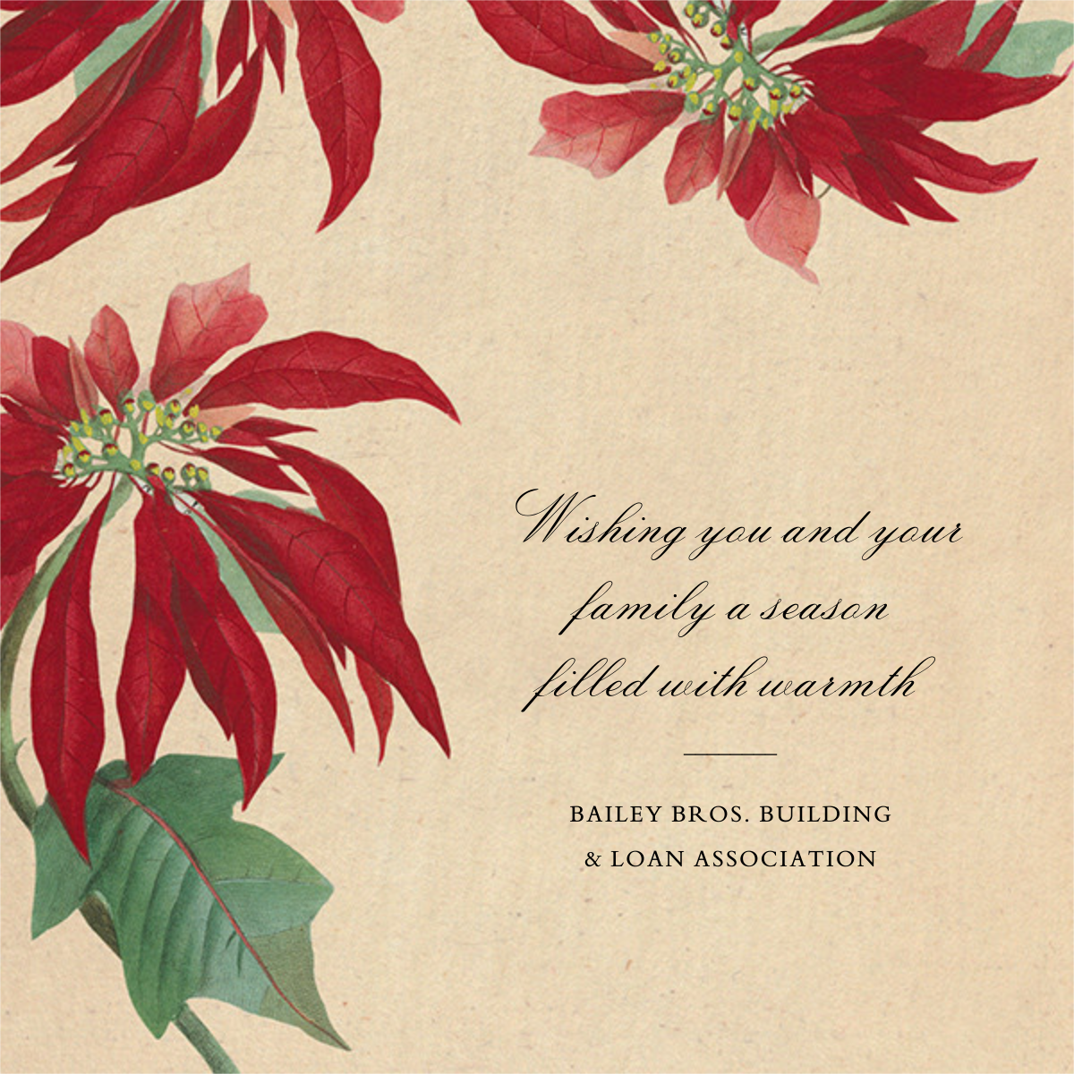 Euphorbia - John Derian - Business holiday cards