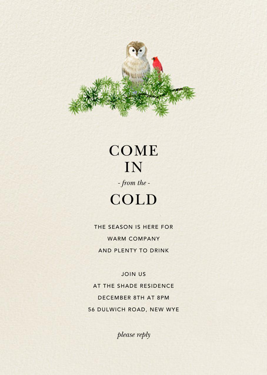 Barn Owl - Felix Doolittle - Winter entertaining