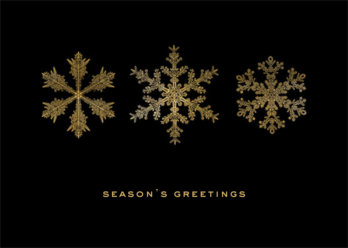 Snow - Black/Gold - Paperless Post - Holiday cards