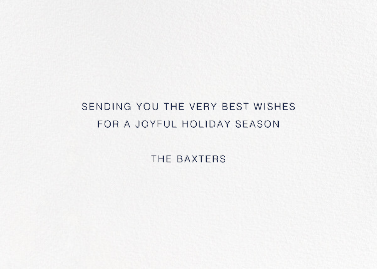 Fun Lines (5 Photos) - Navy - Paperless Post - Holiday cards - card back