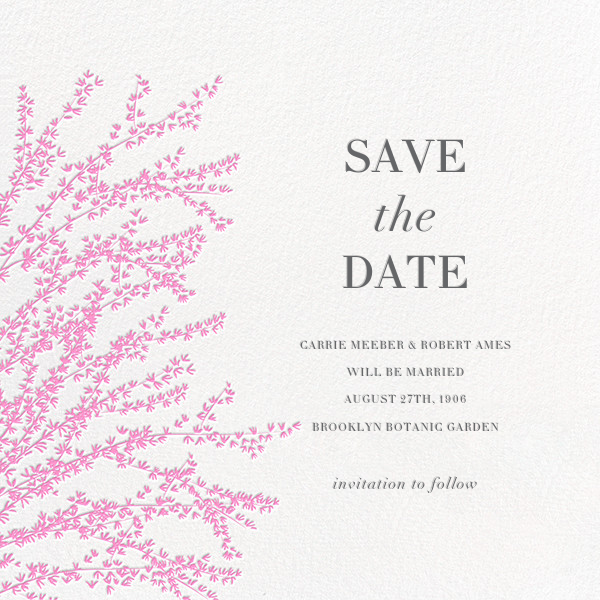 Forsythia - Pink - Paperless Post - Save the date