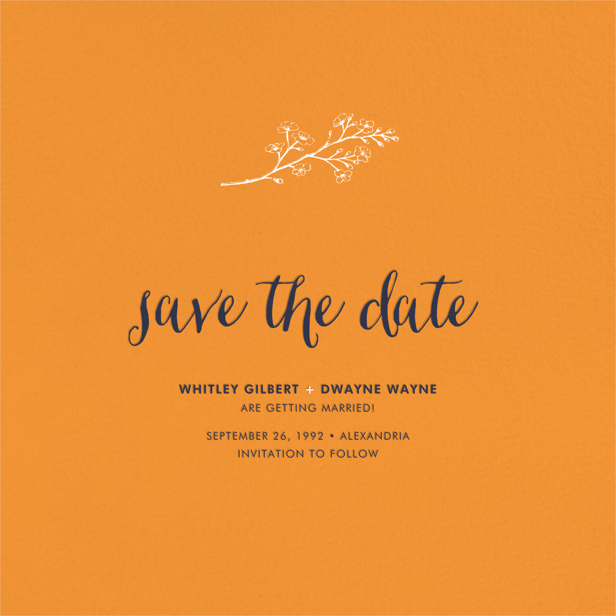 Tangelo (Save the Date) - Paperless Post - Party save the dates